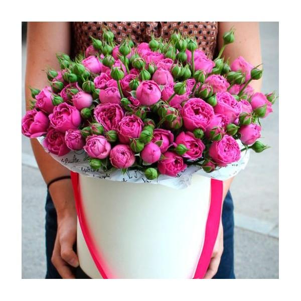51 роза Мисти Баблз в шляпной коробке